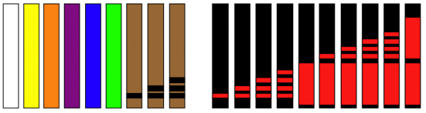 The progression of belts in Kenpo Karate